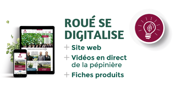 Roue se digitalise-1