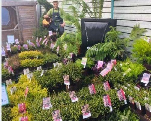 concours plantes bruyeres 4